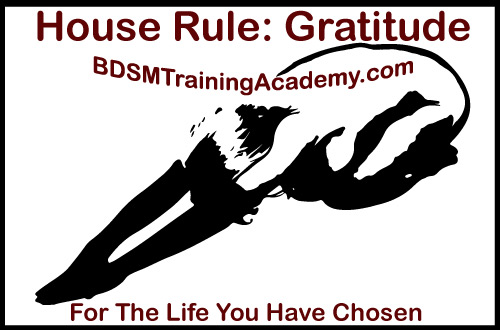 BDSM House Rule Gratitude